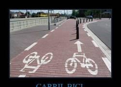 Enlace a CARRIL BICI