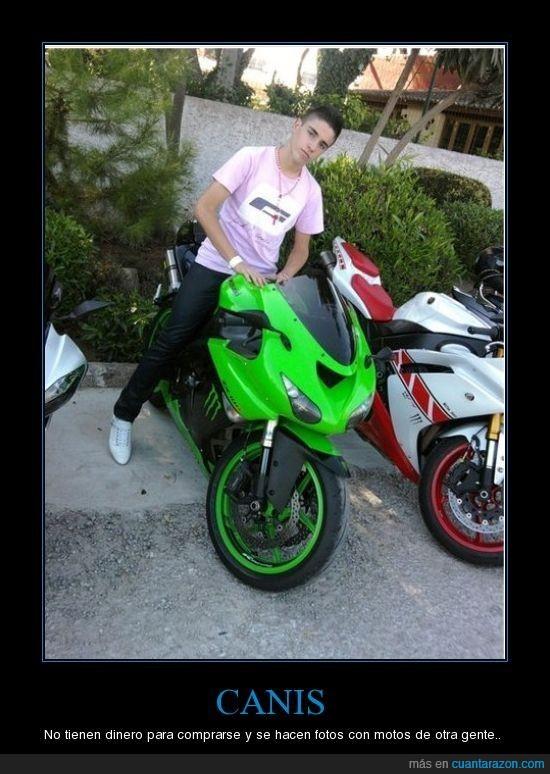 canis,dinero,motos