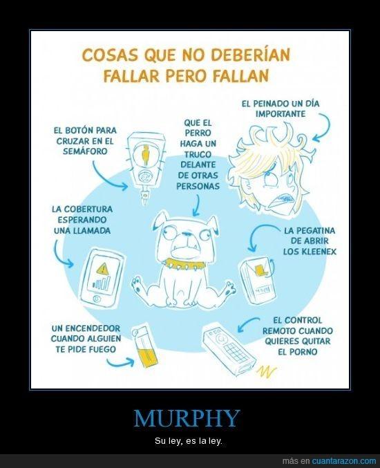 ley,Murphy