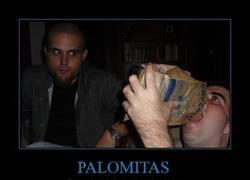 Enlace a PALOMITAS