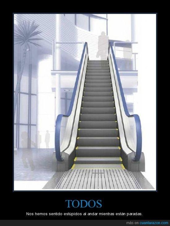 escaleras,mecanicas,paradas,todos