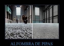 Enlace a ALFOMBRA DE PIPAS