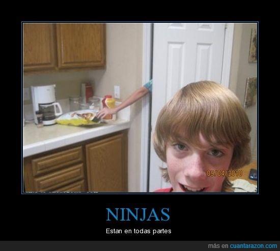 cocina,ninjas,patatas,robar
