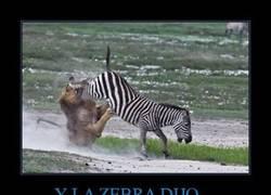 Enlace a Y LA ZEBRA DIJO...