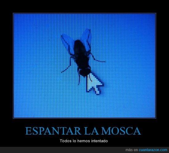 cursor,espantar,mosca,pantalla,ratón