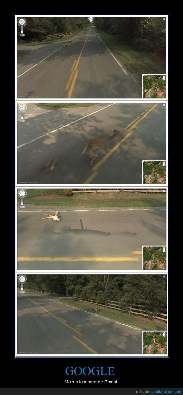 bambi,google,la,madre,mato