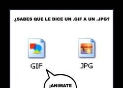 Enlace a GIF´S