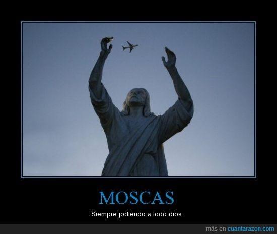 estatua,molestar,moscas