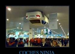 Enlace a COCHES NINJA