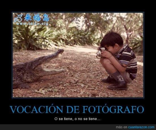cocodrilo,foto,Fotógrafo,niño