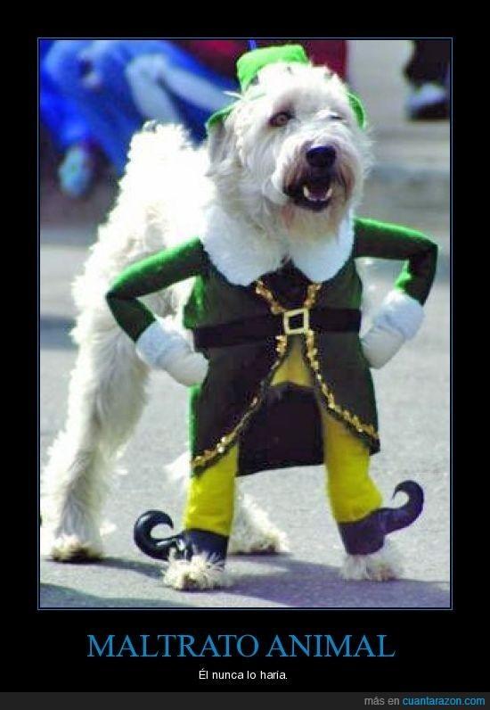 disfraz,fail,perro