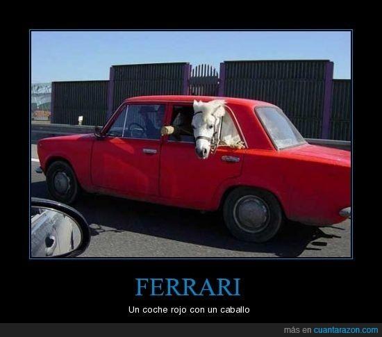 blanco,caballo,coche,ferrari,rojo