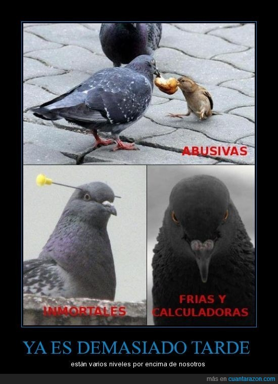 abusibas,calculadoras,inmortales,malignas,palomas