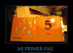 Enlace a MI PRIMER FAIL