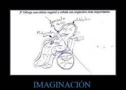 Enlace a IMAGINACIÓN