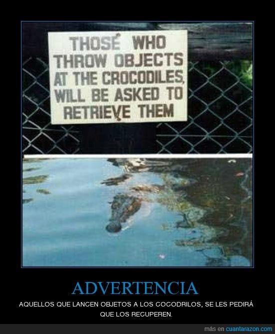 advertencia,cocodrilos