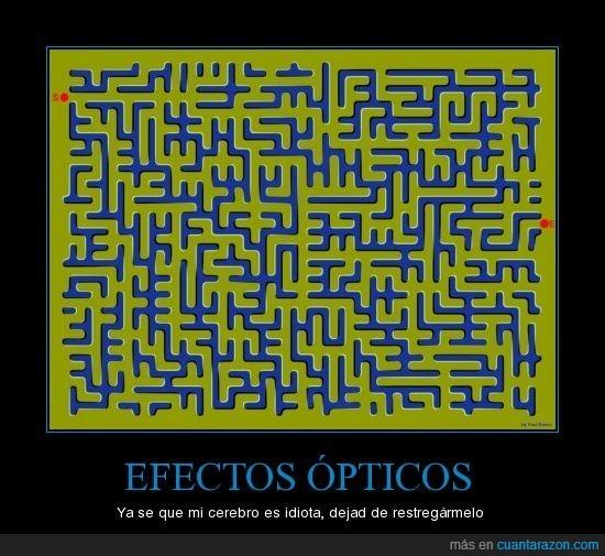 cerebro,efecto,óptico