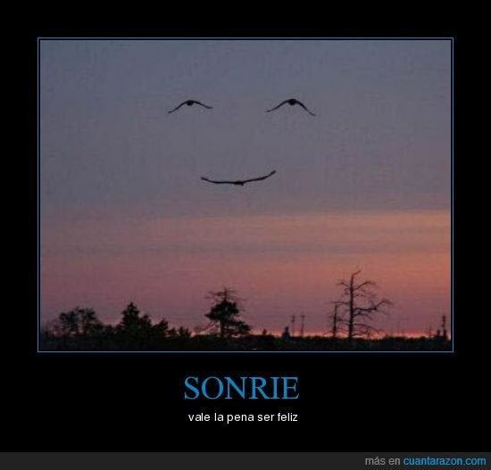 feliz,pajaros,sonrie