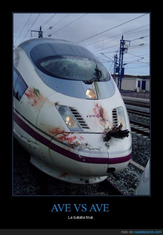 avi,batalla,morro,pajaro,sangre,tren