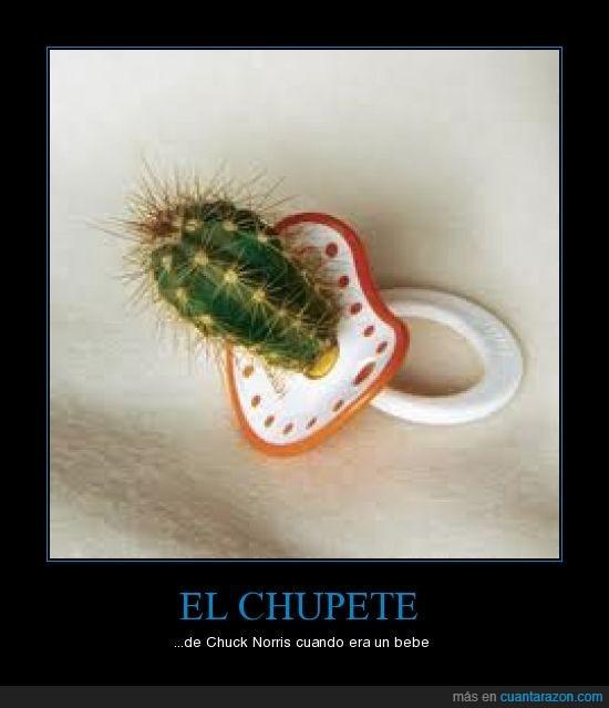chuck,chupete,norris