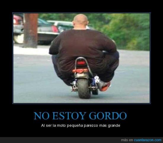 gordo,moto
