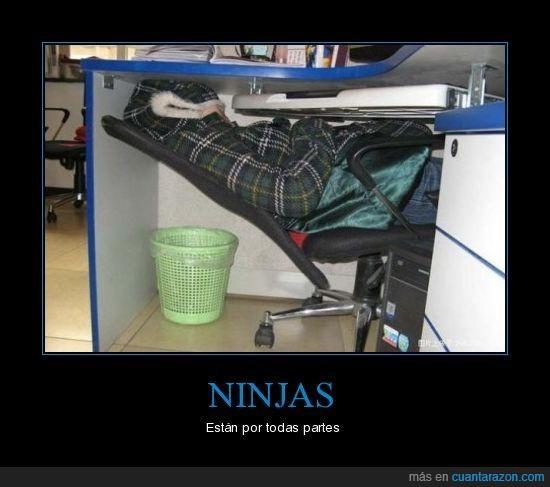 dormir,foto,ninja,oficina,siesta