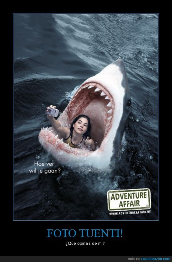 foto,mar,tiburon,tuenti