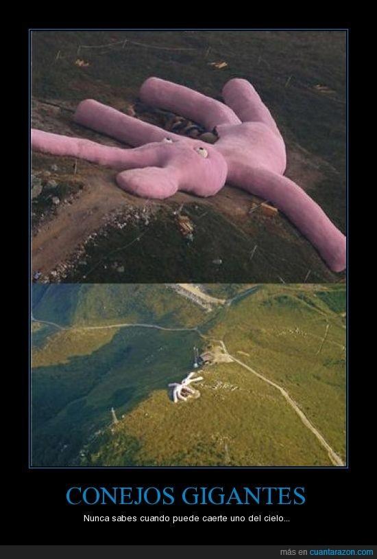 gigante,peluche,rosa