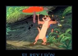 Enlace a EL REY LEÓN