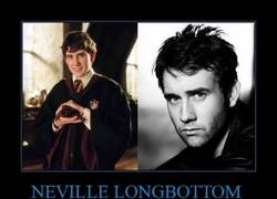 Enlace a NEVILLE LONGBOTTOM