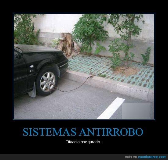 antirobo,arbol,coche,sistema