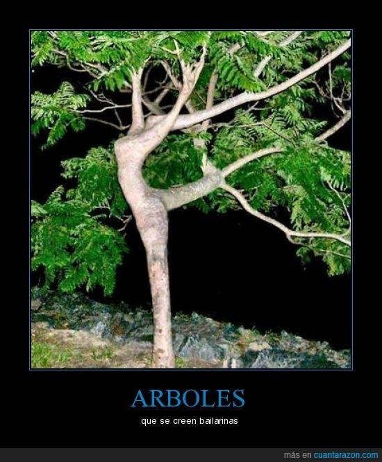 árboles,bailarinas,forma