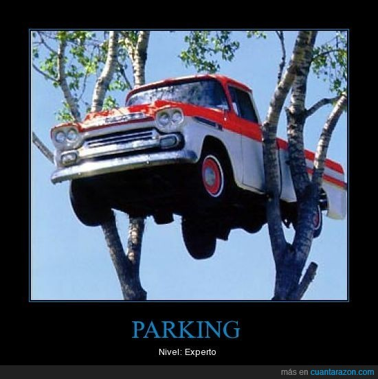 arbol,experto,nivel,parking,ramas