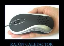Enlace a RATÓN CALEFACTOR