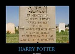 Enlace a HARRY POTTER