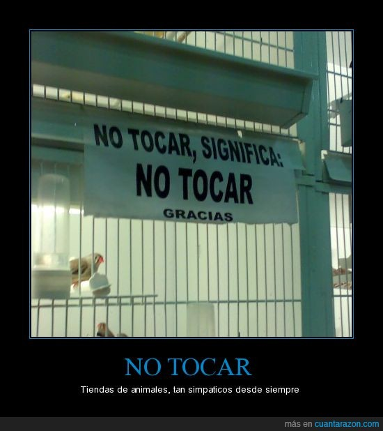 animales,no tocar,significado,tienda