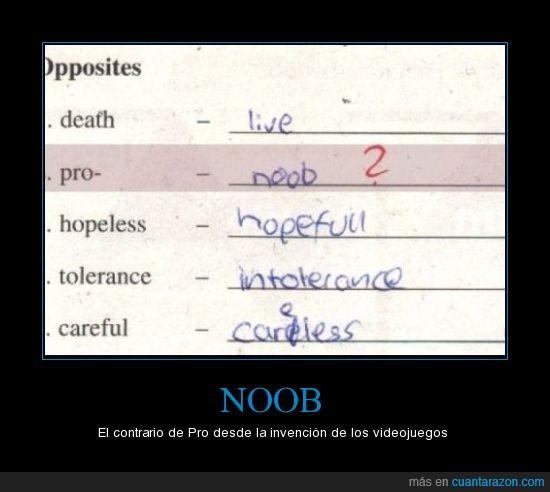noob,pro