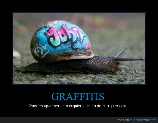 caracol,graffitti