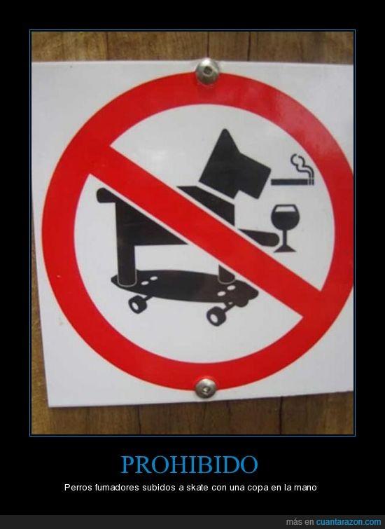 fumador,inteligente,mordedor,perro,poco,señales