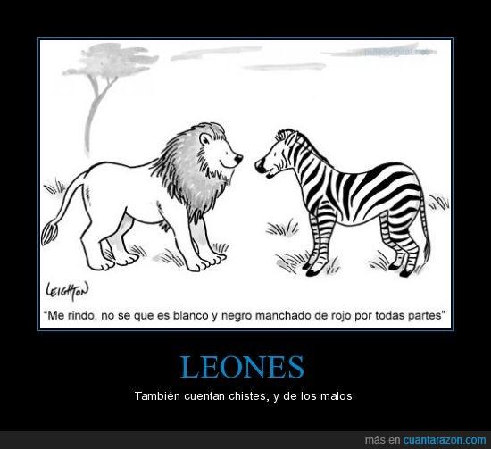 adivinanza,cebra,león