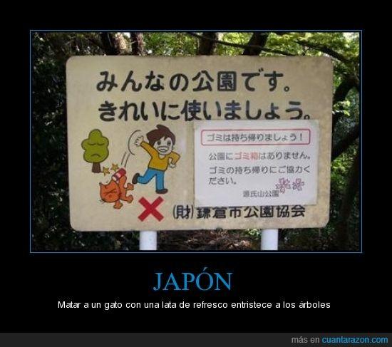 gato,japón