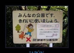 Enlace a JAPÓN