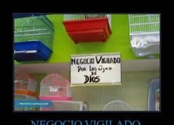 Enlace a NEGOCIO VIGILADO