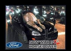 Enlace a FORD