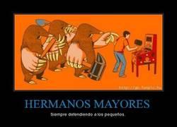 Enlace a HERMANOS MAYORES