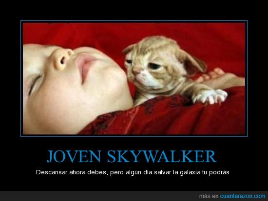joven,skywalker,yoda