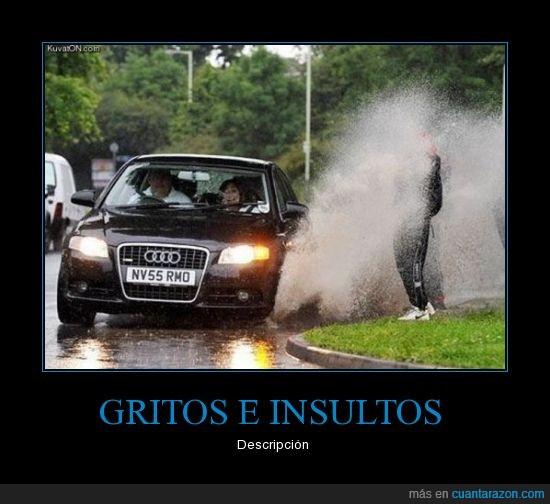 charco,gritos,insultos,lluvia,mojar