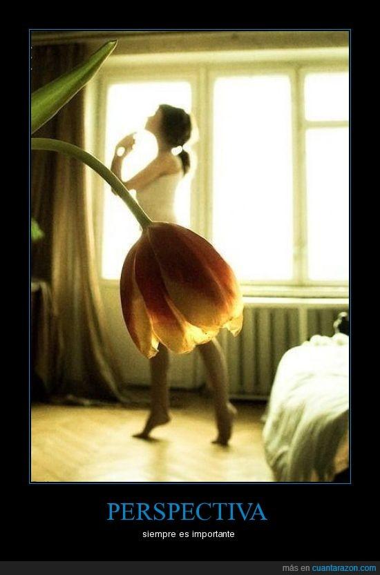 bailarina,perspectiva