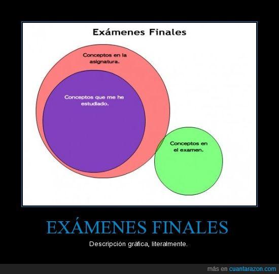 conceptos,estudiar,examen
