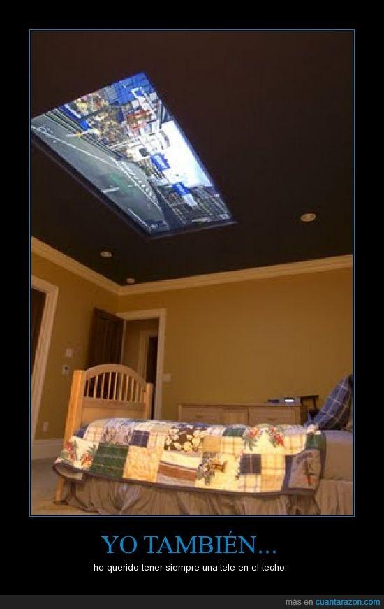 habitación,techo,tele